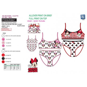 ET3036 - CONJUNTO INTERIOR MINNIE